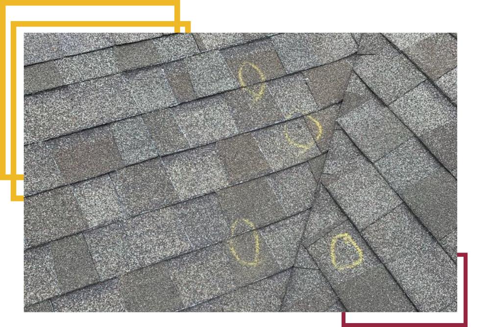 Spotting Roof Damage - Brotherhood Roofing